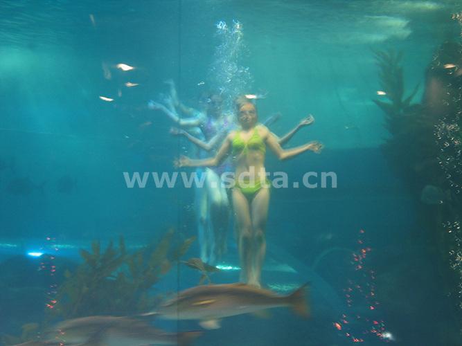 青岛海底世界美人鱼_青岛海底世界