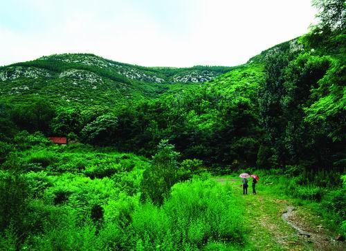 济南波罗峪旅游度假区                                   景区级别