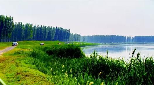 http://www.sdta.cn/uploads/1498101721-106.png