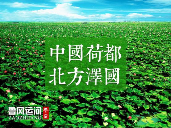 http://www.sdta.cn/uploads/1501053690/1501057347-1126.png
