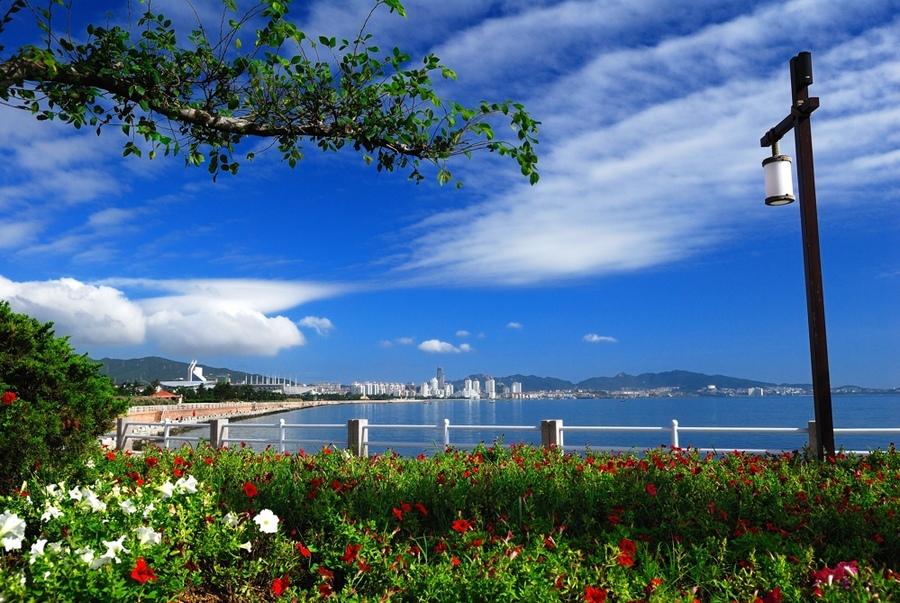 http://www.sdta.cn/uploads/1515052567/1515052593-image003.jpg