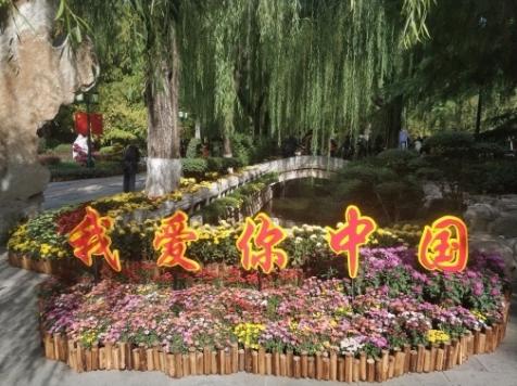 http://www.sdta.cn/uploads/15719953242-image7.png